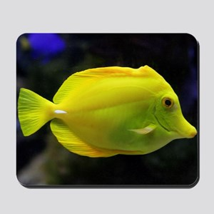 Fish003 Mousepad