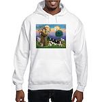StFrancis-4Cavaliers Hooded Sweatshirt