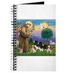 StFrancis-4Cavaliers Journal