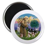 StFrancis-4Cavaliers Magnet