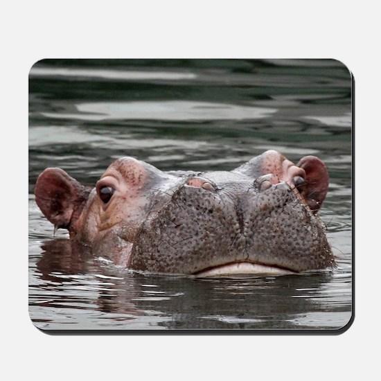 Hippo002 Mousepad