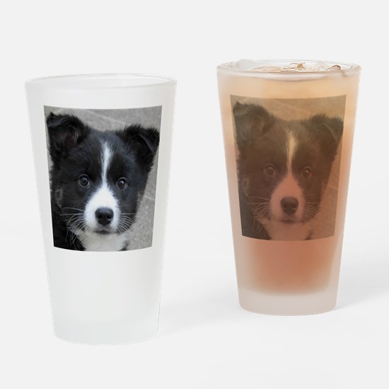 IcelandicSheepdog007 Drinking Glass