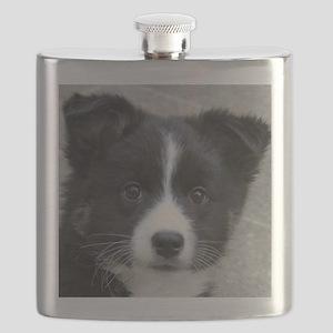 IcelandicSheepdog007 Flask