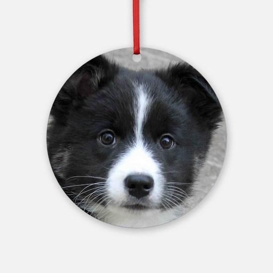 IcelandicSheepdog007 Round Ornament