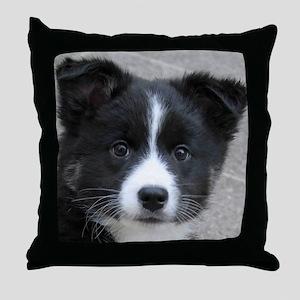 IcelandicSheepdog007 Throw Pillow