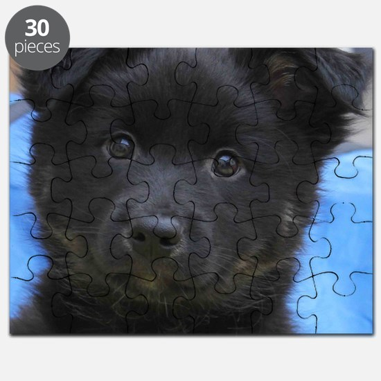 IcelandicSheepdog008 Puzzle
