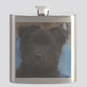 IcelandicSheepdog008 Flask