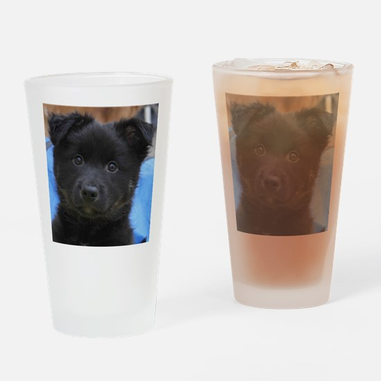IcelandicSheepdog008 Drinking Glass