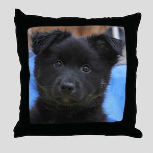 IcelandicSheepdog008 Throw Pillow