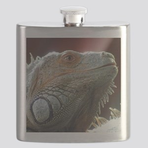 Iguana003 Flask