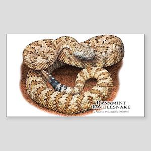 Panamint Rattlesnake Sticker (Rectangle)