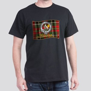 Stewart of Galloway Clan T-Shirt