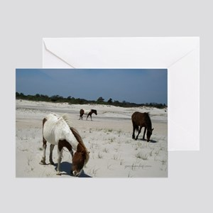 Assateague ponies Greeting Cards