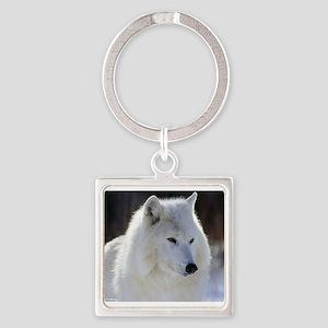 2329_White_Wolf Keychains
