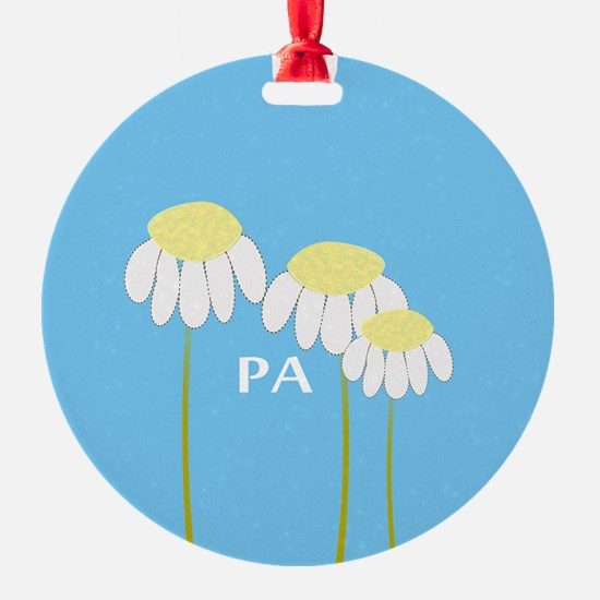 Physician Assistant 4 Ornament