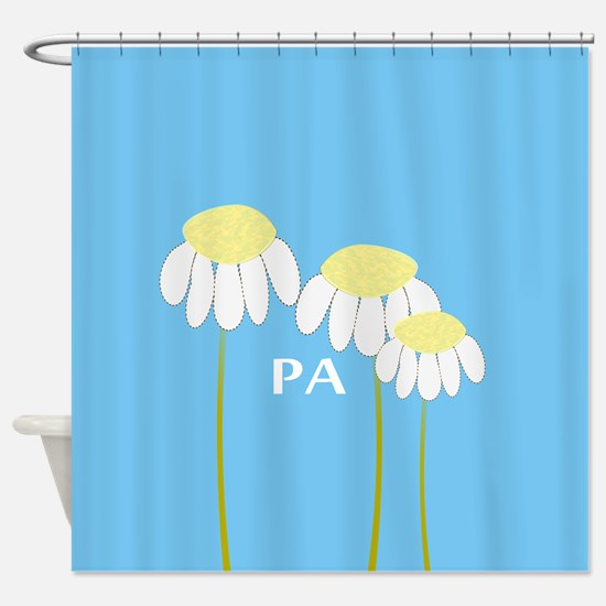 Physician Assistant 4 Shower Curtain