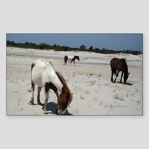 Assateague ponies Sticker