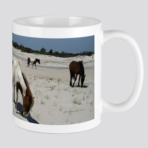 Assateague ponies Mugs