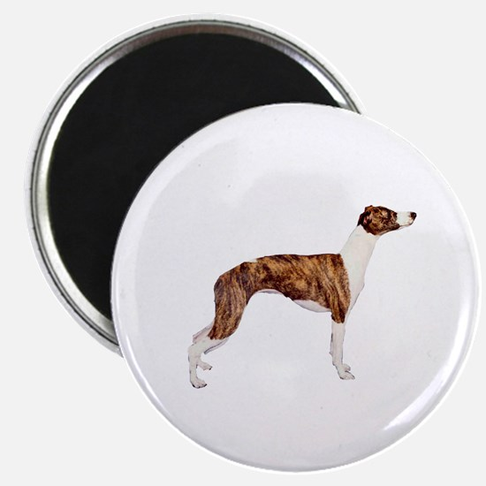 Whippet (brindle-Wht) Magnet