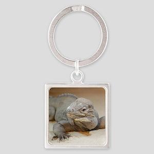 Iguana004 Square Keychain