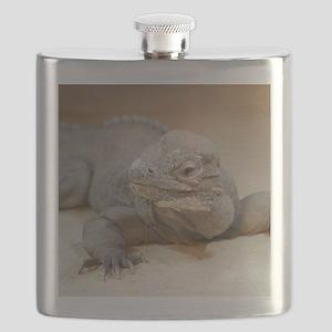 Iguana004 Flask