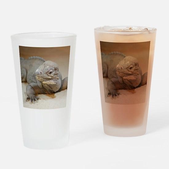 Iguana004 Drinking Glass