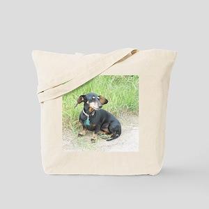 BeBe Nice Breeze Tote Bag