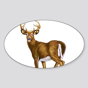 White Tail Deer Buck Sticker (Oval)