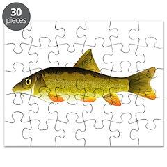 Barbel Puzzle