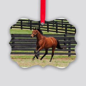 BIG BROWN in his Paddock - Picture Ornament