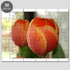 Elaines pics 2008 digslr 102 Puzzle