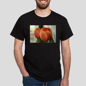 Elaines pics 2008 digslr 102 Dark T-Shirt