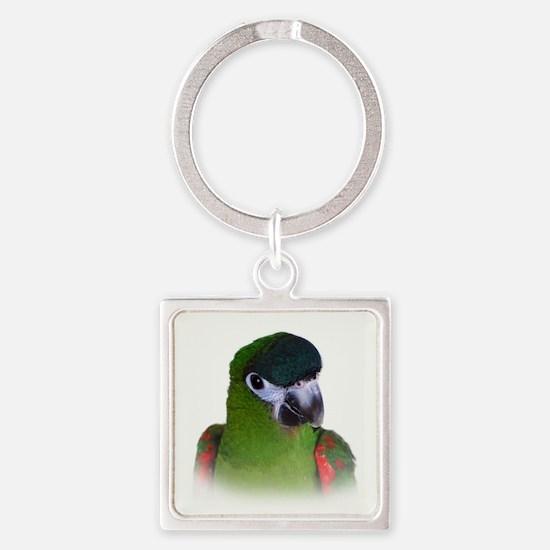 Hahns Macaw.jpg Keychains