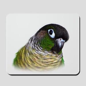 Green Cheek Conure Mousepad