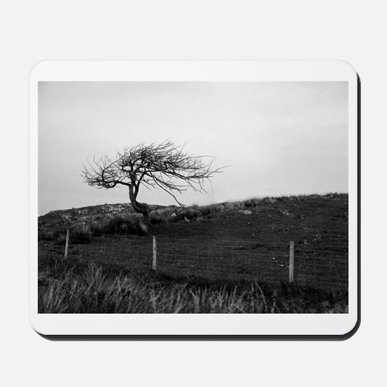 Lonely tree Mousepad