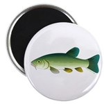 Tench Magnets