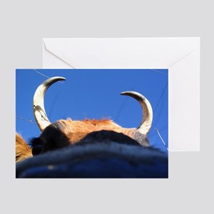 PROTECTACOW Greeting Cards (Pk of 10)