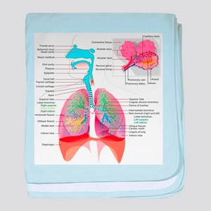 Respiratory system complete baby blanket