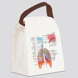 Respiratory system complete Canvas Lunch Bag