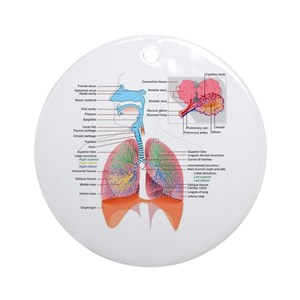 Lung ornaments cafepress ccuart Choice Image