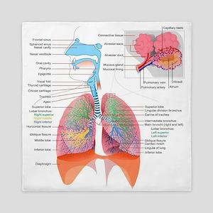 Respiratory system complete Queen Duvet