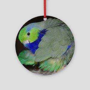 Pacific Parrotlet Round Ornament