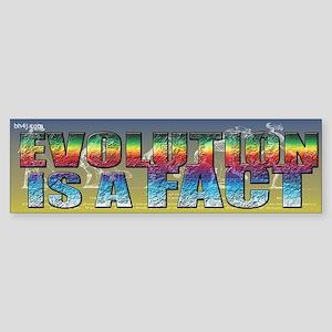 Evolution Is A Fact Bumper Sticker