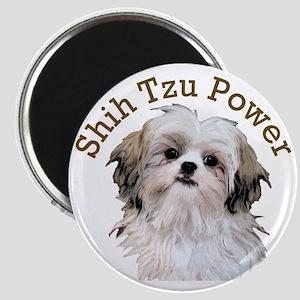 Shih Tzu Power Magnet