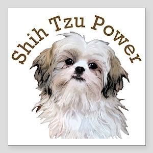 "Shih Tzu Power Square Car Magnet 3"" x 3"""