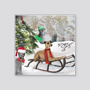 Greyhound playing in the snow pillows Sticker