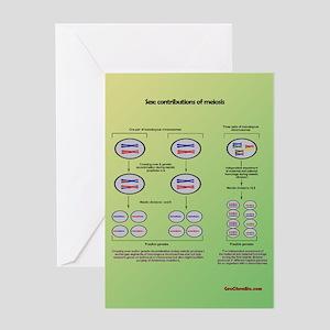 Genetics of meiosis Greeting Cards