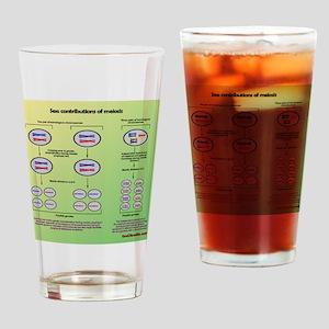 Genetics of meiosis Drinking Glass