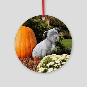 Halloween pitbull puppy Ornament (Round)