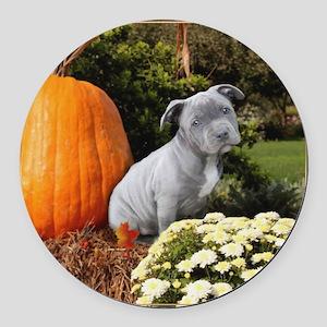 Halloween pitbull puppy Round Car Magnet